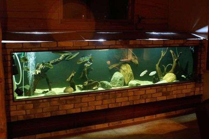 Робимо великий акваріум своїми руками (26 фото)