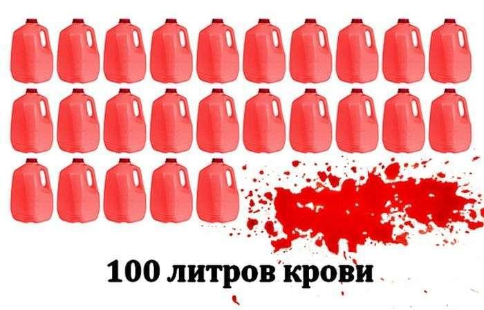 ТОП-10 найбільш кривавих жахів у світі (20 фото)