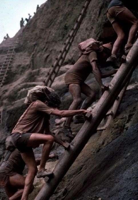 Як видобувають золото в Золотоносної Серра-Пеладе (19 фото)