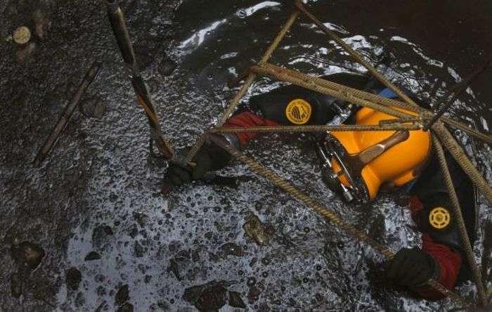 Страшенно брудна робота (12 фото)