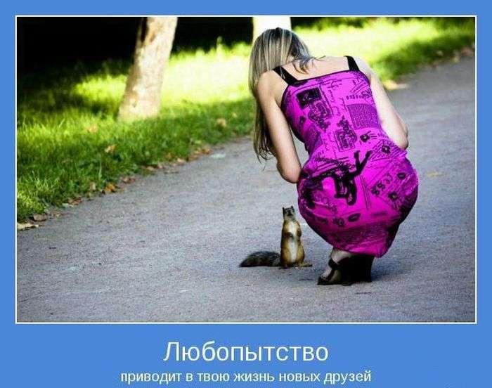 Позитивні мотиватори (40 фото)