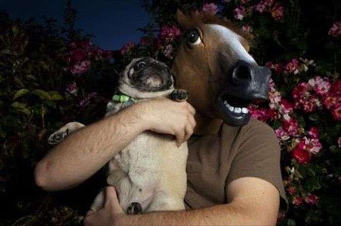 Дивні люди і забавні тварини. Частина 2 (41 фото)