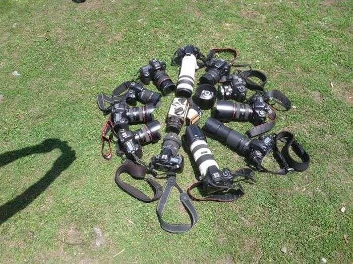 Прикольні картинки (118 фото)