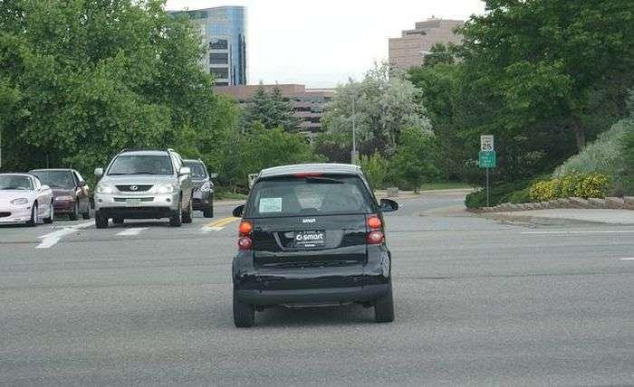 Найпарадоксальніші автомобільні закони в США (7 фото)